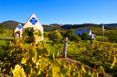 Ivanhoe Wines - A unique Hunter Valley wine experience