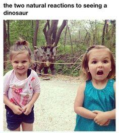 Kids are cute