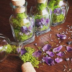 The perfect gift! Not too big and not too small, these adorable terrariums each come with, (similar to pictured) with three small amethyst