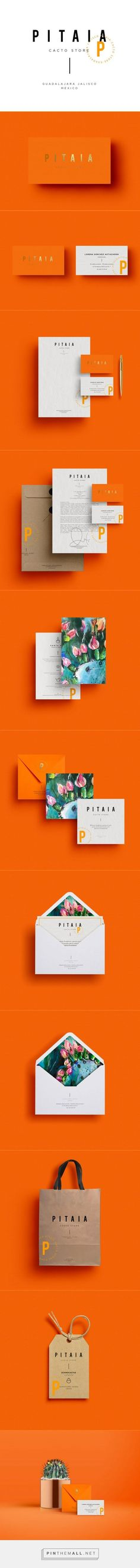 Pitaia Branding by Malarte Studio – Inspiration Grid | Design Inspiration