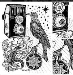 crow and pocket watch