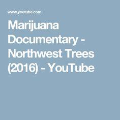 Marijuana Documentary - Northwest Trees (2016) - YouTube