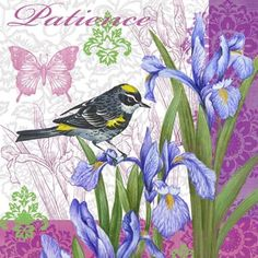 Birds and Flowers-Patience by Elena Vladykina | Ruth Levison Design
