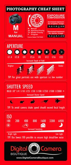 Using your Digital Camera in Manual Mode can be hard to understand. Our Photography Cheat Sheet will help you master the various controls and be confident