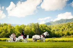 Topnotch Wedding Photo Gallery - Topnotch Resort and Spa | Stowe Wedding Photos