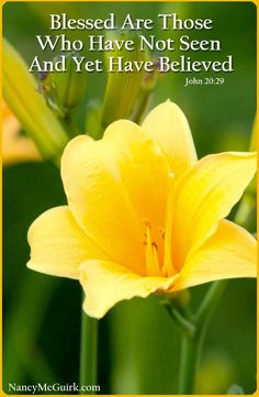 """Bible Verse - John 20:29 """"Blessed Are Those Who Have Not Seen And Yet Have Believed."""" NancyMcGuirk.com"""
