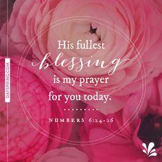 Praying For You Ecards | DaySpring