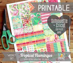 Tropical Flamingos Weekly Printable Planner Stickers, EC Planner Stickers, Weekly Planner Stickers, Flamingos Stickers  - Cut files