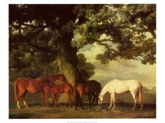Green Pastures Print by George Stubbs at Art.com