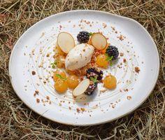 Unique dish of hay ice-cream with honey blackberries & granola.  Genius @chefadam_1 @thecrossatkenilworth  #foodphotography #foodphotographer #foodphotography #London #gourmetartistry #gastroart #food #foodie #foodart #instadaily #theartofplating #instafood #instachef #chefslife #instagramhub #igers #truecooks #chefstalk #chefsroll #foodstarz #thestaffcanteen #grateplates #simplisticfood #hay #icecream #jodihinds
