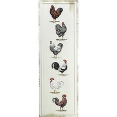 Find MHS Licensing Embossed Tin, Roosters in the Home Decor category at Tractor Supply Co.This art features a variety of rooster breeds.
