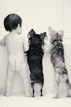 Baby and Dogs photography. Bath time! I wonder if Izzie would pose like this with SF...