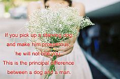 If you pick up a starving dog and make him prosperous, he will not bite you. This is the principal difference between a dog and a man.