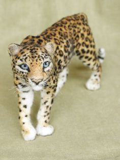 Needle felted Leopard poseable felted animal made to by Ainigmati, $350.00