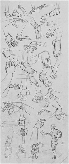 Drawing Reference Hands Arm Anatomy Ideas Drawing Reference Hands Arm Anatomy Ideas This image has get Arm Anatomy, Anatomy Drawing, Drawing Studies, Art Studies, Drawing Lessons, Drawing Techniques, Drawing Sketches, Art Drawings, Sketching