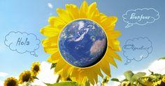 Linguagea_moodle - 116497273527897866451 - Álbumes web de Picasa