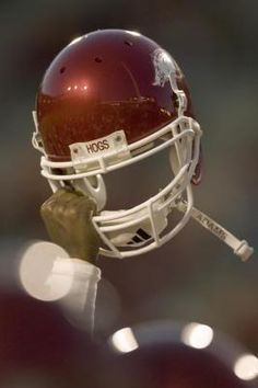 Arkansas Razorback, very cool!