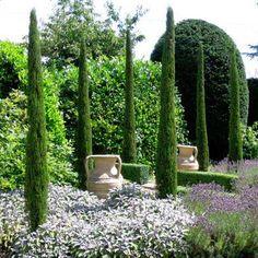 Massif de piscine plantes exotiques piquets etmargelles d 39 ardoise roche galets graviers - Cypres d italie totem ...