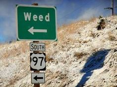 """2 yrs ago in Breckenridge, CO—on 4/20 at 4:20 pm—Mike Davis opened up a pot lounge. Club 420 didn't just cater to medical marijuana patients: Any adult w a bag of weed could come inside, rent a vaporizer, & smoke out. Citizens of the quaint snowboarding town recently voted to decrim pot possession, but local officials figured a pot lounge was a step too far & quickly shut it down. But Breckenridge continued to be known as Colorado's most toker-friendly tourist town—""""the Amsterdam of the…"""