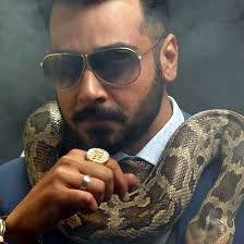 faisal qureshi bashar momin Celebs, Celebrities, Urdu Quotes, My Crush, Pakistani, Acting, Mens Sunglasses, My Favorite Things, Stars