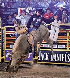 Ty Murray, the best Bull Rider there ever will be and ever was...