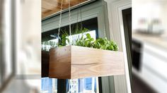 Everything in the room, from their well-placed bowl of apples, to their hanging herb garden, was well thought out, with the judges loving all the different elements. Herb Garden Planter, Herb Garden In Kitchen, Kitchen Herbs, Herb Planters, Kitchen Ideas, The Block Kitchen, The Block Glasshouse, Melbourne Apartment, Hanging Herbs