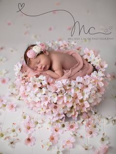 Inspiration For New Born Baby Photography : Beautiful image! New Born Baby Photography Picture Description Beautiful image!