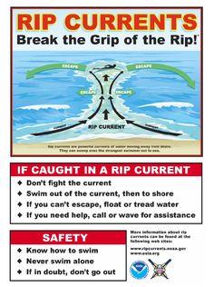 Image result for beach begins hazard signs