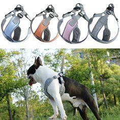 Allacki Sport Dog Vest Harness Reflective Night Safety Harness Leash Set #Allacki Cat Harness, Pet Dogs, Pets, Dog Vest, Pet Fashion, Large Dogs, Pet Supplies, Safety, Puppies