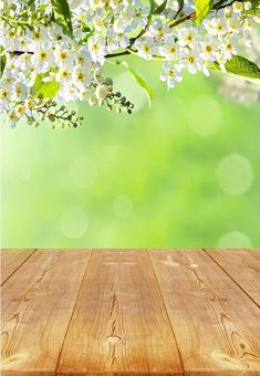 Nature Photography Flowers, Flowers Nature, Photography Backdrops, Photography Photos, Easter Backdrops, Muslin Backdrops, Custom Backdrops, Spring Colors, Spring Flowers
