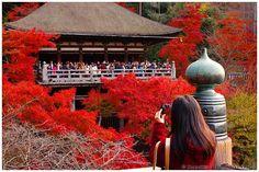 Snapshooting in autumn (Kiyomizudera 清水寺) | Flickr - Photo Sharing!