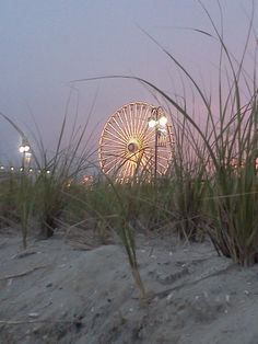 Ocean City, NJ - I loved the beach and boardwalk.  I remember one foggy evening when I was about 6 yrs. old, we were walking the boardwalk and I had gotten cotton candy.  The fog melted it and with the slight breeze my long hair and t-shirt were covered in a sticky, sugary mess.