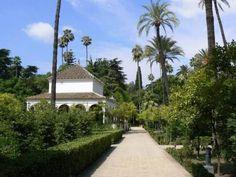 Explore the Barrio Santa Cruz area of Seville: Things to Do in Santa Cruz, Seville: Seville Alcazar