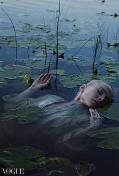 Lily pads coagulate in blots of vapid light. Below the water, I sense more than see Ossie's body, spiraling towards some mute blue crescendo.