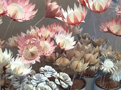 The paper proteas that we have been making have been such fun to design. This ancient flower, which has been around since the days of Gond. Large Paper Flowers, Giant Flowers, Diy Flowers, Fabric Flowers, Diy Paper, Paper Crafts, Paper Art, Protea Flower, Plant Crafts