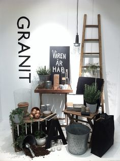 VM | Window Visual Merchandising | VM | Window Display | styling ideas #shortears