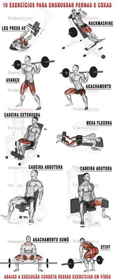 10 exercícios para engrossar pernas e coxas com vídeos (visitar artigo). - Γυμναστική - Welcome Home Body Fitness, Mens Fitness, Health Fitness, Fitness Workouts, Fitness Motivation, Legs Day, Gym Time, Weight Training, Build Muscle