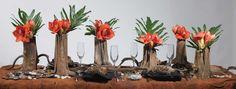 """Natural Hollow Tree Stump $11.95 (6- 9"""" tall)    bonito"""