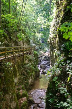 Beautiful excursion destination near Vienna: the Johannesbachklamm in Würflach - Travel Great Places, Beautiful Places, Places To Visit, Forest Landscape, Future Travel, Where To Go, Austria, Travel Inspiration, The Good Place