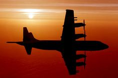 RAAF P-3 Orion at sunset Go Navy, Royal Australian Air Force, Dawn And Dusk, Navy Aircraft, United States Navy, Angry Birds, South Park, Monkeys, Jets