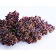 What would you name this strain?   Premier cannabis training destination. Leading cannabis college. Best marijuana school. All the thc university information you need is at Cannabis Training University. Get CTU certified and start a cannabis career. Get your cannabis training online at the leading cannabis college, CTU!