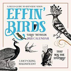 Effin' Birds 2021 Wall Calendar: A Field Guide to Identification by Aaron Reynolds Book Club Books, New Books, Good Books, Art Calendar, 2021 Calendar, Funny Birds, Vintage Birds, Field Guide, Wall Colors