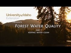 Forest Water Quality Part 1 - Keeping Water Clean - YouTube