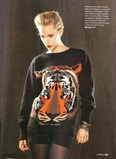 Mis Pasatiempos  Amo el Crochet: Esquema de tigre para tejer en dos agujas