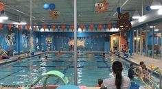 Goldfish Swim School Macomb