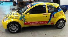 Ford Ka Mk Rally Car