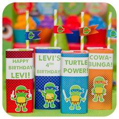Teenage Mutant Ninja Turtles Birthday Party Ideas | Photo 1 of 36