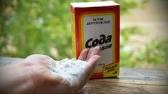 Пищевая сода эффективный помощник в саду и огороде: 11  способов применения | болезни и вредители - страница 2