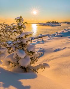 Snowy winter (Lake Ladoga, Karelia Region, Russia) by Fedor Lashkov ❄️🌅 is part of Winter scenery - Winter Photography, Landscape Photography, Nature Photography, Winter Sunset, Winter Scenery, Winter Pictures, Nature Pictures, Beautiful Sunset, Beautiful Places