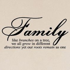 Family like branches on a tree, we all grow in different directions yet our roots remain as one.